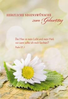 Glückwunschkarte Herzliche Segenswünsche zum Geburtstag (6 St) Gänseblümchen