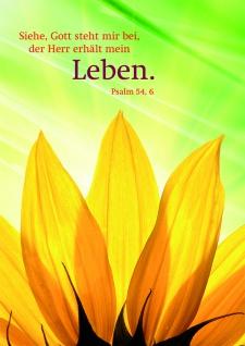 Doppelkarte Psalm Sonnenblume Bibelwort (6 Stck) Grußkarte Kuvert