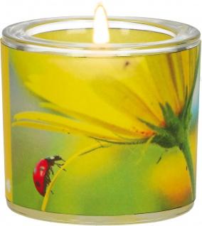 Windlicht Glas Genesung Teelicht Pergament-Umleger Mundgeblasen Blüte