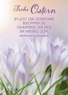 Postkarte Frohe Ostern (10 St) Krokusse Friedrich von Bodelschwingh Grußkarte