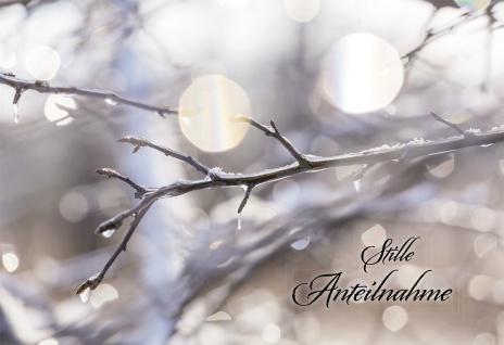 Trauerkarte Stille Anteilnahme (6 St) Dietrich Bonhoeffer Grußkarte Kuvert