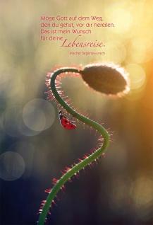 Grußkarte Irischer Segenswunsch 6 St Kuvert Gott Lebensreise Marienkäfer Gott
