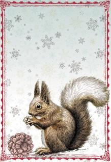 Glückwunschkarte Zauberhafte Winterzeit (6 St) Eichhörnchen Grußkarte Kuvert