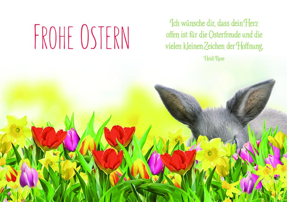 Osterkarte Frohe Ostern Hase Tulpen (6 St) Grusskarte Kuvert ...