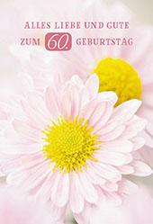 Gluckwunschkarte Alles Liebe Und Gute Zum 60 Geburtstag 6 St