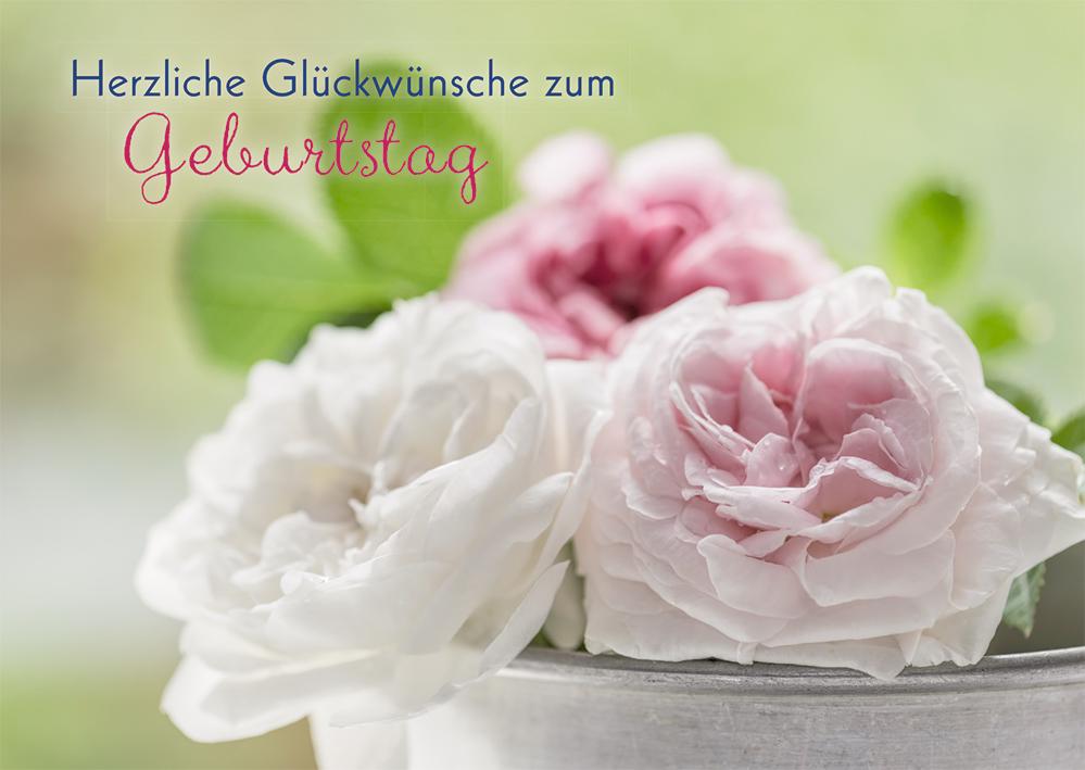 Glückwunschkarte Herzliche Glückwünsche Zum Geburtstag 6 St Rosen Grußkarte