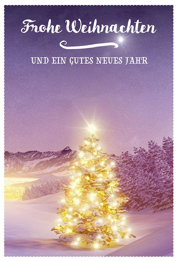 Bilder Weihnachten Neues Jahr.Weihnachtskarte Frohe Weihnachten Gutes Neues Jahr 6 Stck Tannenbaum Kuvert