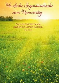 Postkarte Namenstag 10 St Adressfeld Irmgard Erath Sonnenstrahlen Blumenwiese