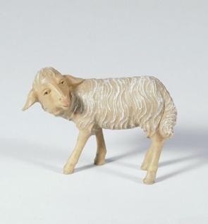 Tiroler Krippe Schaf umschauend bemalt 15 cm Krippen Figur Weihnachten
