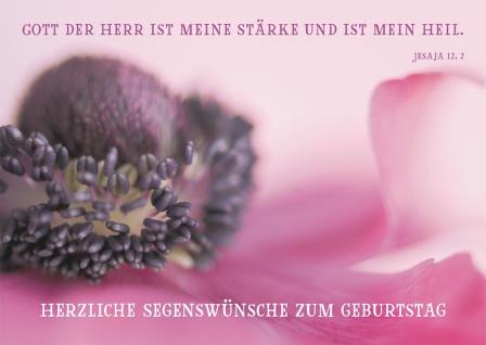 Postkarte Herzliche Segenswünsche zum Geburtstag (10 St) Blume Lutherbibel