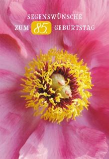 Glückwunschkarte Segenswünsche zum 85. Geburtstag (6 St) Blumen Lutherbibel