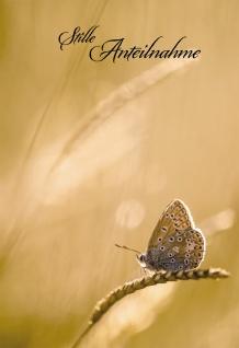 Trauerkarte Stille Anteilnahme (6 St) Bonhoeffer Schmetterling auf Grashalm