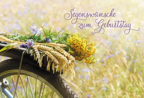 Glückwunschkarte Segenswünsche zum Geburtstag (6 St) Feldblumen Kuvert