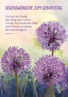Postkarte Geburtstag Blumen 10 St Adressfeld Bibelwort Segen Lebensweg Glück