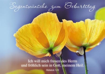 Postkarte Segenswünsche zum Geburtstag (10 St) Gelbe Mohnblumen Lutherbibel