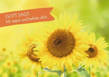 Postkarte Gott sagt: Ich segne und behüte dich (10 St) Sonnenblumen Heidi Rose