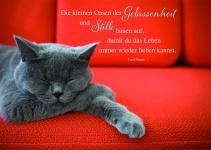 Postkarte Gelassenheit und Stille (10 St) Grußkarte Sinnspruch Lebensweisheiten