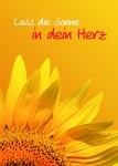 Glückwunschkarte Lass die Sonne in dein Herz! (10 Stck) Grußkarte Postkarte