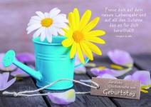 Postkarte Herzliche Glückwünsche zum Geburtstag (10 Stck) Glückwunschkarte