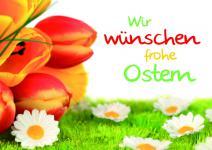 Osterkarte Wir wünschen frohe Ostern (10 Stck)