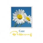 Genesungskarte Gute Besserung (3 Stck) Genesungswünsche Grußkarte Kuvert