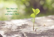 Klappkarte Bibelwort Psalm 27, 1 (6 Stck) Baumsprößling Grußkarte Kuvert