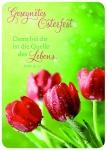 Postkarte zu Ostern Rote Tulpen Gesegnetes Osterfest (10 Stck)