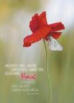 Postkarte Schöner Moment (10 St) Schmetterling auf Blume Franz Grillparzer