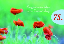 Geburtstagskarte 75. Segenswünsche Geburtstag (6 Stck) Glückwunschkarte Kuvert