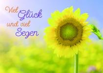 Postkarte Geburtstag Viel Glück und viel Segen (10 Stck) Glückwunschkarte