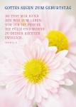 Postkarte Gottes Segen zum Geburtstag (10 St) Blumen Psalm Lutherbibel