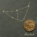 Wandrelief Sternzeichen Steinbock Schiefer Swarovski 14, 5 Schiefertafel