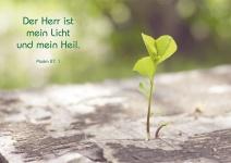 Postkarte Der Herr ist mein Licht (10 St) Baumsprössling Psalm Lutherbibel