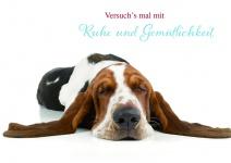 Postkarte Ruhe und Gemütlichkeit (10 Stck) Grußkarte Sinnspruch Lebensweisheiten