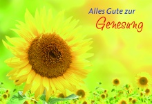 Klappkarte Alles Gute zur Genesung (6 Stck) Grußkarte Alfons Gerhardt Kuvert