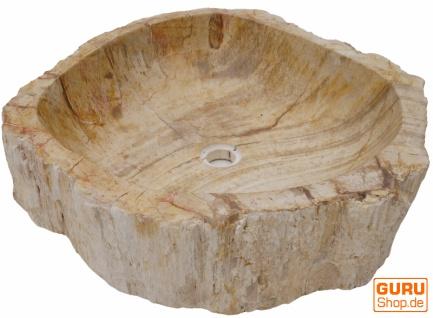 Massives Fossiles Holz Aufsatz-Waschbecken, Waschschale, Naturstein Handwaschbecken - Modell 31