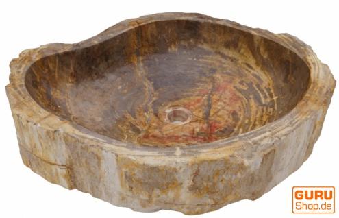 Massives Fossiles Holz Aufsatz-Waschbecken, Waschschale, Naturstein Handwaschbecken - Modell 16