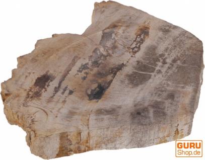 Exotische Seifenschale aus versteinertem Holz