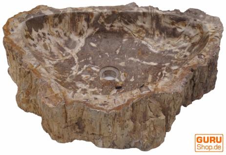 Massives Fossiles Holz Aufsatz-Waschbecken, Waschschale, Naturstein Handwaschbecken - Modell 17