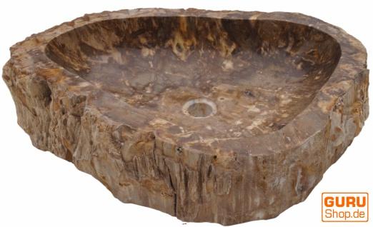 Massives Fossiles Holz Aufsatz-Waschbecken, Waschschale, Naturstein Handwaschbecken - Modell 8