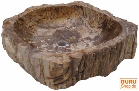 Massives Fossiles Holz Aufsatz-Waschbecken, Waschschale, Naturstein Handwaschbecken - Modell 11