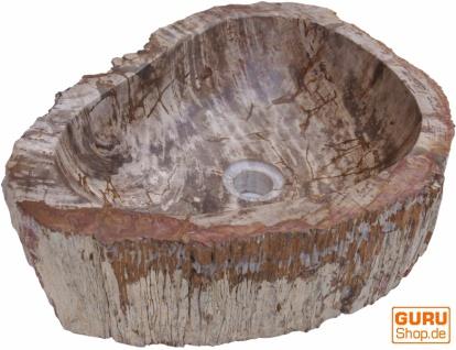 Massives Fossiles Holz Aufsatz-Waschbecken, Waschschale, Naturstein Handwaschbecken - Modell 1
