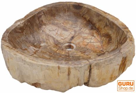 Massives Fossiles Holz Aufsatz-Waschbecken, Waschschale, Naturstein Handwaschbecken - Modell 13