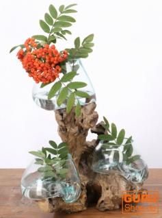 Exotische Wurzelholz Vase mit drei Gläsern - Ø Glas bis 10 cm