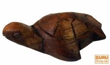 kleine Holz Schildkröte