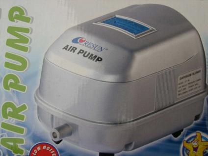 Resun Membran - Sauerstoffpumpe Durchlüfter 3000 ltr./h Eisfreihalter Belüfter