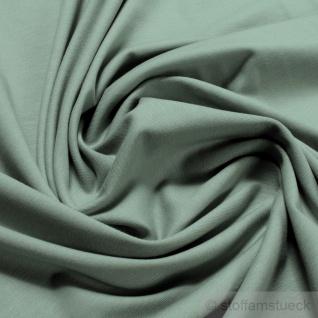 0, 5 Meter Stoff Baumwolle Elastan Single Jersey pastellgrün T-Shirt weich