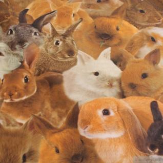 Stoff Kinderstoff Baumwolle Popeline Kaninchen allover Digitaldruck