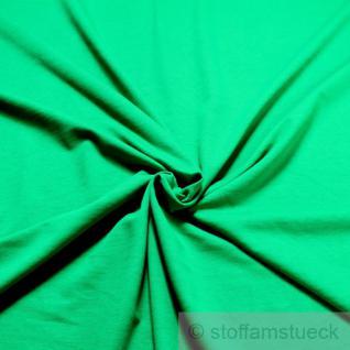 Stoff Baumwolle Single Jersey grasgrün angeraut Sweatshirt weich dehnbar
