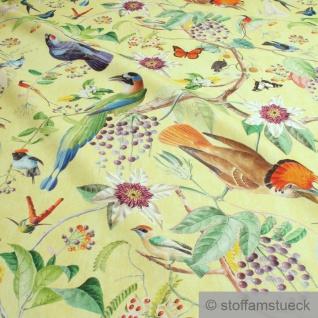 Stoff Baumwolle Rips gelb Vogel bunte farbenfrohe Vögel Schmetterling